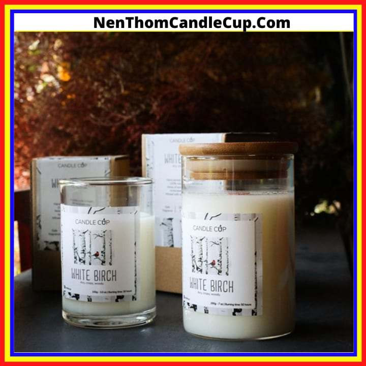 Nến thơm candle cup review